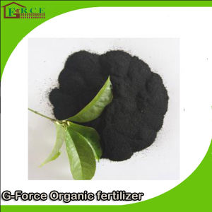 Organic Fertilizers for Rice Fertilizers Are Rich in High N Content Nitro Humic Acids pictures & photos