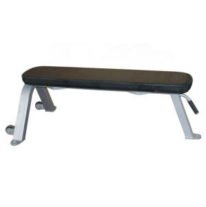 Freemotion Fitness Equipment Flat Bench (SZ27) pictures & photos