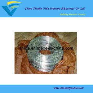 Galvanized Rebar Tie Wire (3.5lbs) pictures & photos