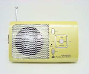 Card Reader Speaker with FM Radio (MD-1169)