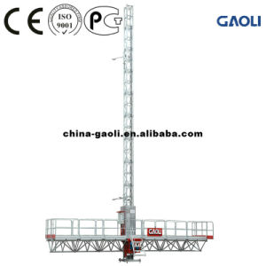 Direct Manufacturer Material Construction Hoisting Work Platform pictures & photos