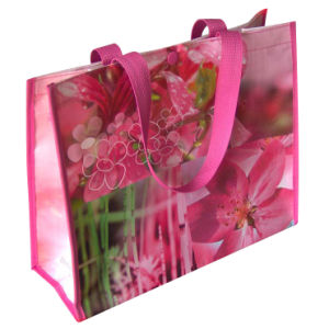 Promotional Custom Cheap Printed Image Recyclable PP Laminated Non Woven Shopping Bag (NW-03) pictures & photos