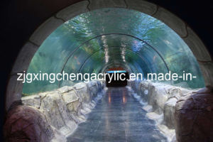 Acrylic Tunnel pictures & photos
