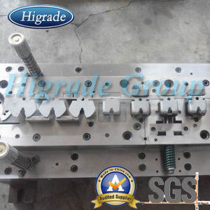 Die Mold/ Stamping Mold/Stamping Moulding (HRD-J10162) pictures & photos