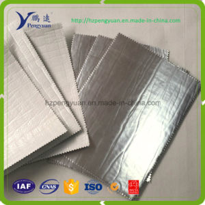Thermal Insulated Foil Woven Frozen Food Cooler Box/Bags Liner pictures & photos