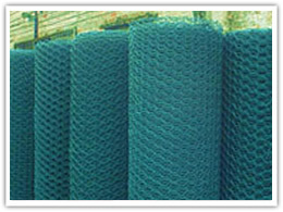 Welded Wire Mesh for Fencing pictures & photos