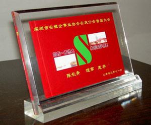 Acrylic Award - 02