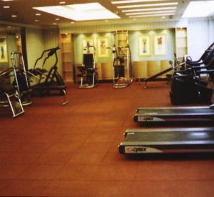 Rubber Tiles Gym Floor pictures & photos