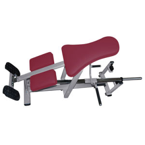 Indoor Gym Fitness Equipment/Lying T-Bar Row/Exercise Machine pictures & photos