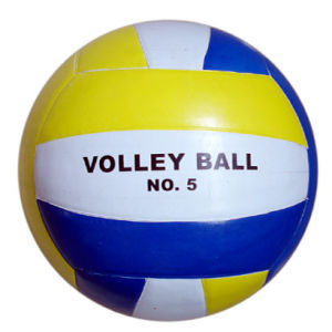 Volleyball, Size 5, Laminated PVC Cover, 18panels (B03102) pictures & photos
