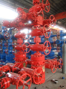 "Wellhead Equipment (5""~7"" X 2 1/2"" Eue 5000psi)"
