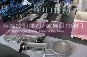 Lug Knife Gate Valve with Bevel Gear Operation pictures & photos