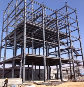 Light Steel Structure Building (SSW-034) pictures & photos