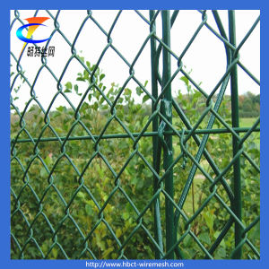 Hot Selling! ! Chain Link Fence (CT-Fence) pictures & photos