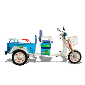 Foldable and Passenger Tricycle