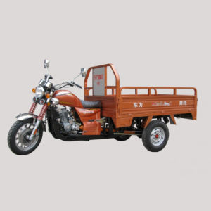 175CC Gasoline Tricycle (DF175F1-B)