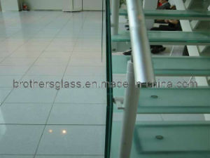 Laminated Glass (BRG003)