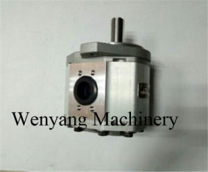 Supply Hangcha Forklift Truck Hc Spare Parts Gear Pump pictures & photos
