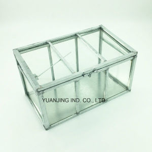 Garden Tools, Mini Greenhouse (PVC/Glass) for Plants/Flowers pictures & photos
