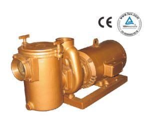 Cp Series Brass Pump (CP3030)