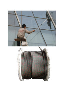 Hot Dipped Galvanized Steel Wire Rope 8*36s+FC pictures & photos