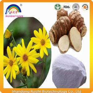 Jerusalem Artichoke Extract Inulin Powder pictures & photos
