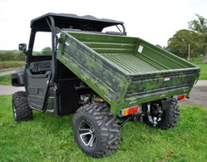 1000cc Diesel UTV 4X4 pictures & photos
