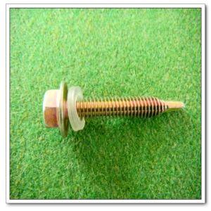 Hex Washer Flange Screw (DIN7504) 4.8*55