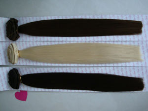 Cheap 100% Human Remy Hair Quad Weft Clip-in Hair Extension pictures & photos