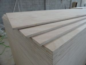 Eucalyptus Plywood / Hardwood Core Plywood