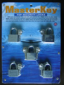 Master Key Chrome Plated Leaves Iron Padlock (M505) pictures & photos
