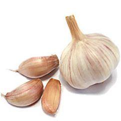 New Crop Fresh White Garlic (4.5-5.0-5.5-6.0cm) pictures & photos