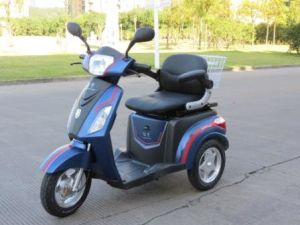 Recreational Electric Vehicle with ISO9001 Certification