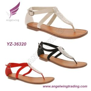 Fashion Flat Sandals (YZ-36320)