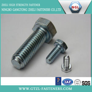 Carbon Steel/ Stainless Steel Hex Bolt, DIN931/933 pictures & photos