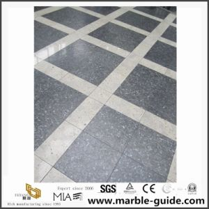 Natural Stone Blue Pearl Granite Tiles for Flooring Steps/Stairs pictures & photos