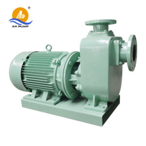 Waste Acid Treatment Anti-Corrossion Self Priming Chemical Oil Pump pictures & photos