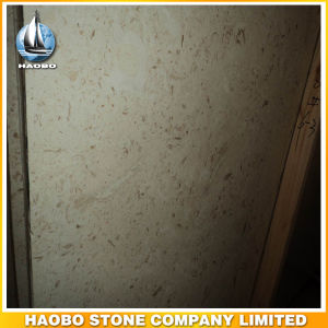 Quality Marble Tiles and Slabs Shell Beige for Sale pictures & photos