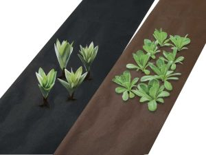 Nonwoven Fabric of Weed Barriers pictures & photos