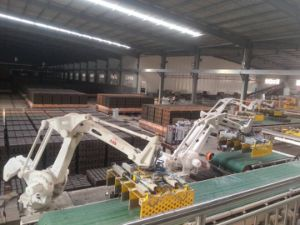 Clay Brick Production Line pictures & photos
