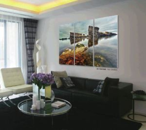 Wall Art Decorative Modern House Design pictures & photos