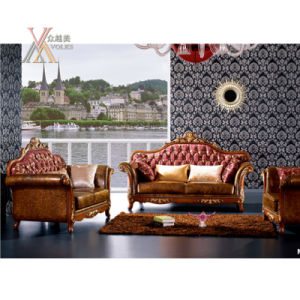 Antique Fabric and Half Leather Sofa Set with Carved Pattern (NCS35)