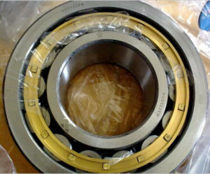 Nu2322 Bearing Brass Cage Nu2324 Nj2312 Nj2316 Single Row Roller Bearing pictures & photos