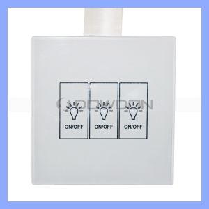 Double-Control Smart Light Switch Touch Control Remote Control Switch pictures & photos