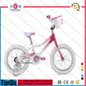 12 16 20 Inch Bicycle for Bangladesh Market pictures & photos