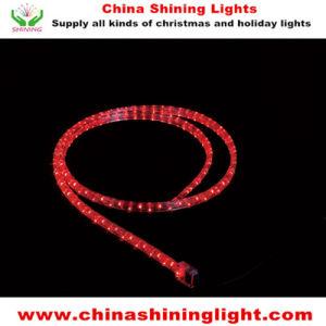 Ce UL SAA Standard Waterproof Outdoor Use LED Decorative Light pictures & photos