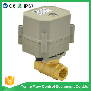 2-Way 230V Dn10 Mini Small Motorized Motorised Electric Control Ball Valve Wholesale pictures & photos