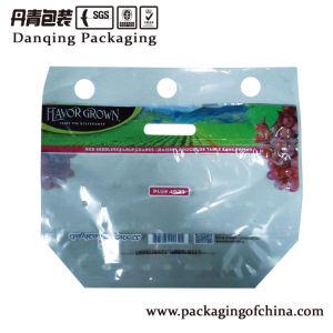 Food Vet Bag Plastic Bag Packaging Film pictures & photos