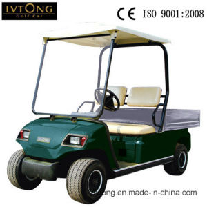 Battery 2 Seater Electric Cargo Car (LT_A2. H2) pictures & photos