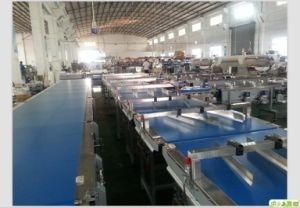Moon Cake Automatic Feeding Package System Line pictures & photos